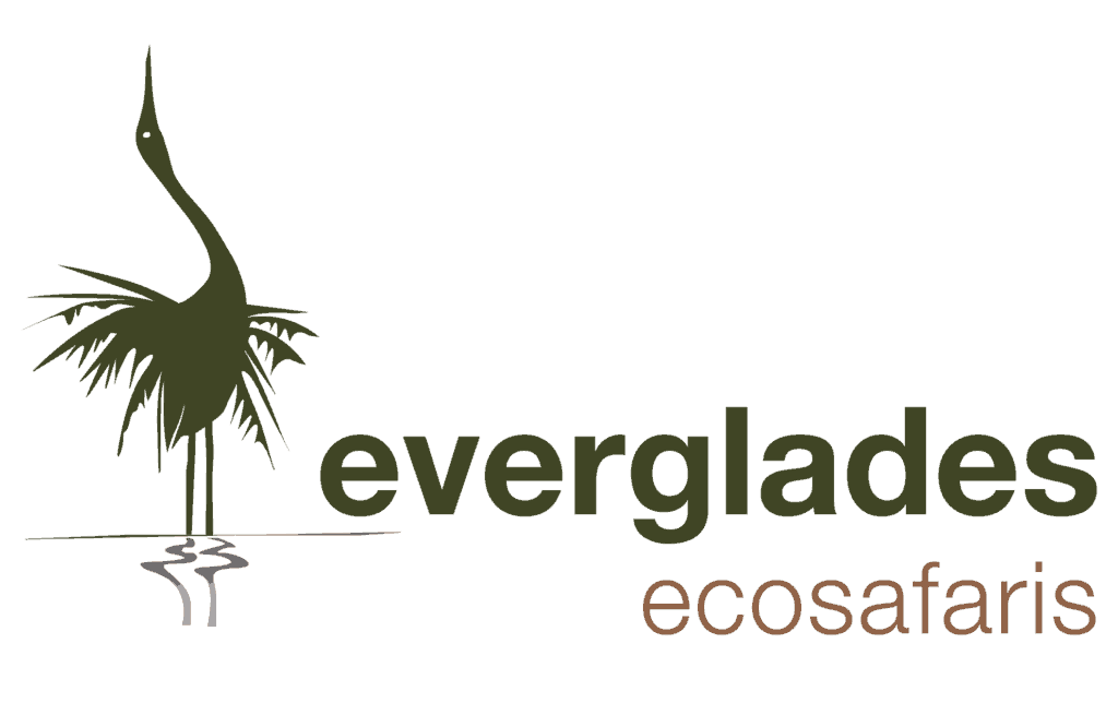 Everglades Eco Safaris Logo